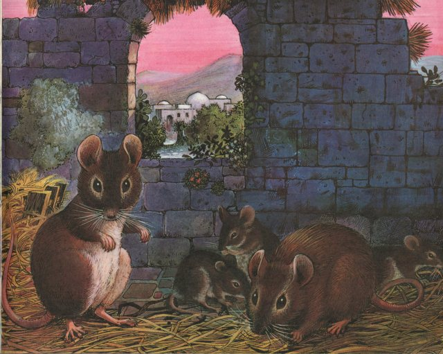 p.45 Mouse