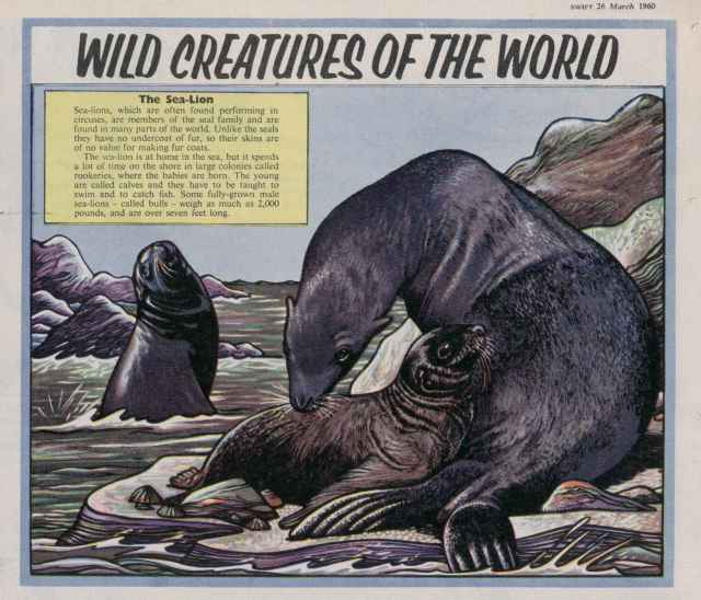 Swift ' Wild Creatures...World' 26 Mar 1960